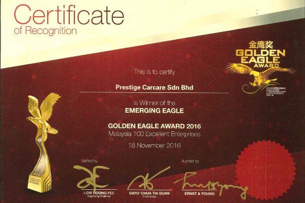 Golden Eagle Award Cert. 2016-page-001